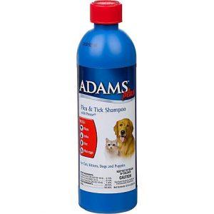 Adams Plus Flea & Tick Shampoo with Precor for Dogs and Cats, 12 oz.