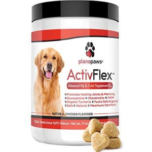 ActivFlex – Glucosamine for Dogs – Safe Hip and Joint Supplement – Natural Dog Joint Support