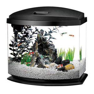 Aqueon 5 Gallon MiniBow LED Desktop Fish Aquarium Kit, Black