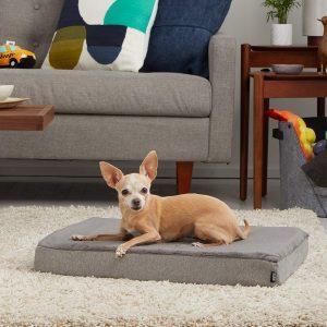 BarkBox Thick Orthopedic Gel Memory Foam Enhanced Dog Bed