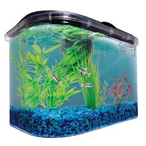 Imagitarium 5.2 Gallon Freshwater Aquarium