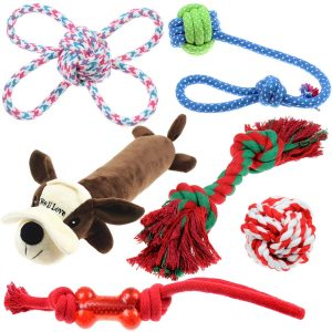 Well Love Dog Toys – Chew Toys