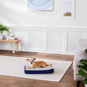 AmazonBasics Shredded Foam Dog Bed with Removable Washable Cover